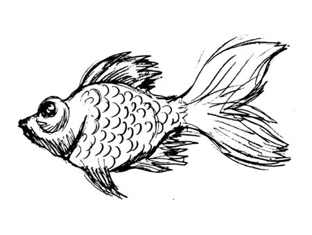 Vector, hand drawn, sketch, cartoon illustration of goldfish. Motives of underwater life, wildlife, fairy tales, aquatic animals Archivio Fotografico - 142204930