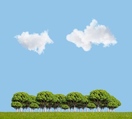 cielo azul: campo verde, �rboles y el cielo azul de fondo