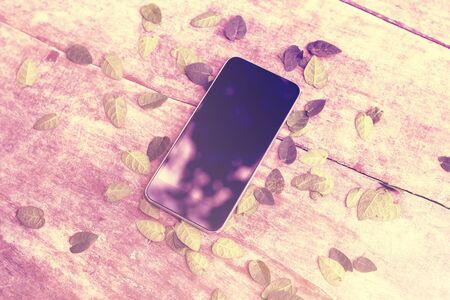 cell phone screen: Blank cell phone screen on wooden table with leaves, instagram photo effect