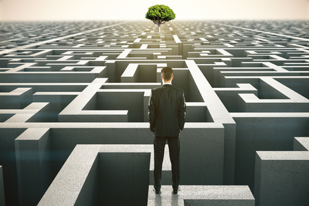 difficult journey: Solution concept with businessman looking at a distant tree standing on maze wall. 3D Rendering