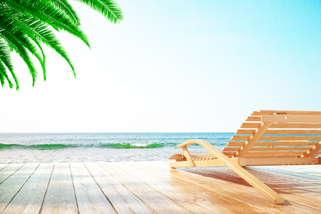 oceanside: Chaise longue at the beach with clear skies and one palm tree