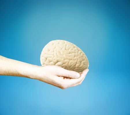 brainstem: Male hand holding brain on blue background