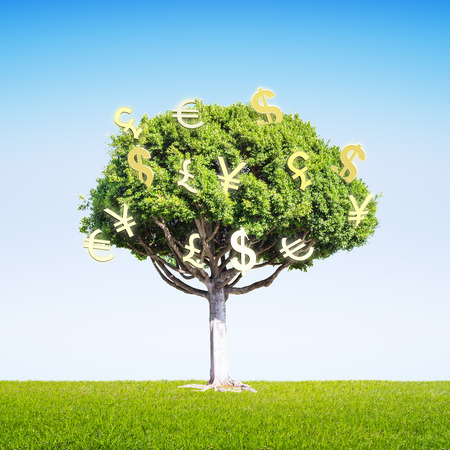 financial growth: Financial growth concept with money sign tree on green grass and bright sky background. 3D Rendering