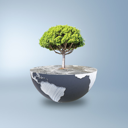 Half a globe with large tree on blue background. Green earth concept. 3D Rendering Stock Photo