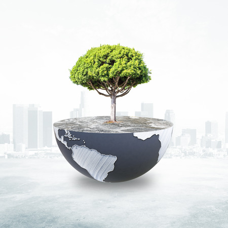 half globe: Half a globe with large tree on abstract city background. Green earth concept. Elements of this image furnished by NASA. 3D Rendering Stock Photo