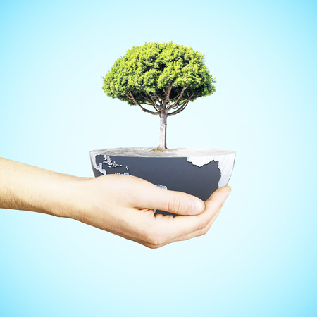 half globe: Male hand holding half a globe with large tree on blue background. Green earth concept. 3D Rendering