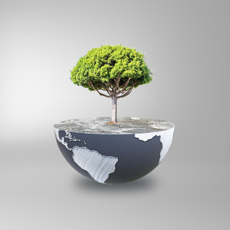 half globe: Half a globe with large tree on grey background. Green earth concept. 3D Rendering