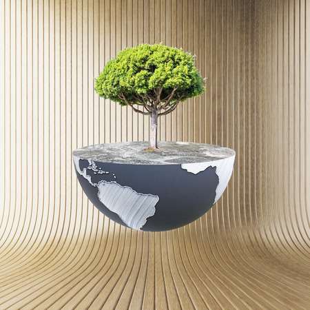 half globe: Half a globe with large tree on wooden background. Green earth concept. 3D Rendering