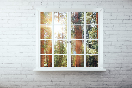view window: Window with forest view on white brick wall. 3D Rendering