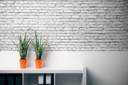 빈 흰색 벽돌 벽 배경에 장식 식물과 문서 선반의 전면 뷰. 모의 3D 렌더링