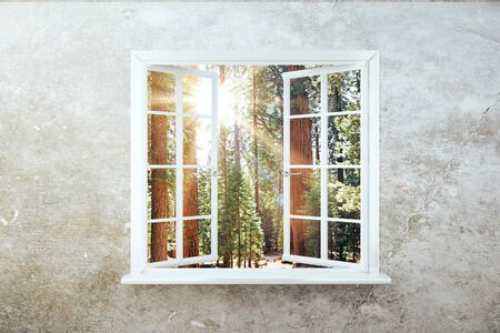 windowsill: Window with forest view and sunlight on concrete wall. 3D Rendering