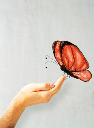 Male hand holding beautiful red butterfly sketch on concrete wall background Stock Photo