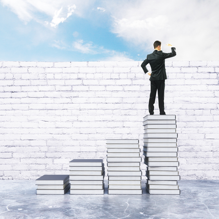 ladder  fence: Young businessman on top of creative book ladder looking into the distance. Research concept. 3D Rendering