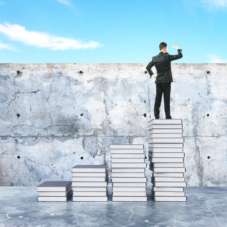 ladder  fence: Young businessman on top of creative book ladder looking into the distance. Education concept. 3D Rendering