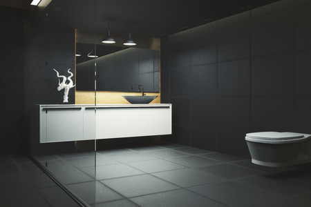 Dark bathroom interior with glass wall and appliances. 3D Rendering