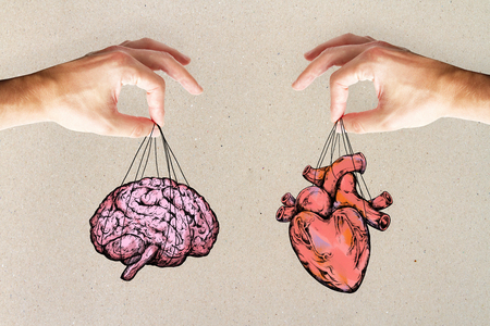 balance your life, logic and feel concept with heart and brain in hands. Stockfoto