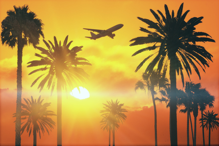 flying airplane above tropical palms at bright sunset background. 3d rendering Banque d'images - 105209030