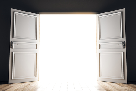 Wide open bright opportunity door. Success and future concept. 3D Rendering