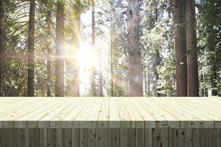 Empty wooden table on forest background. Montage and picnic concept