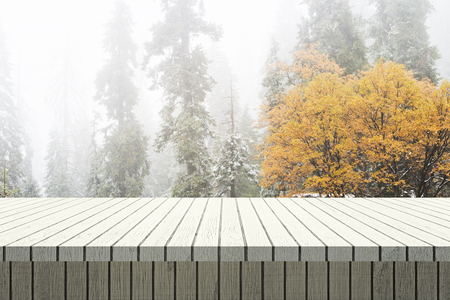 Empty wooden surface on forest background. Montage and picnic concept
