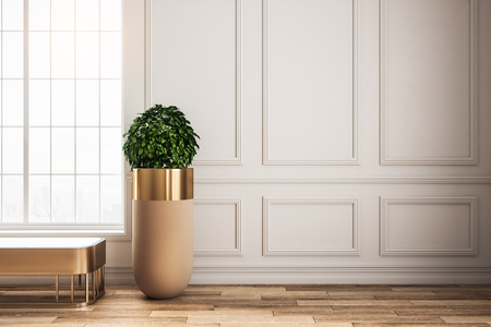 Bright classical interior with window, bench, pot trees and sunlight. 3D Rendering