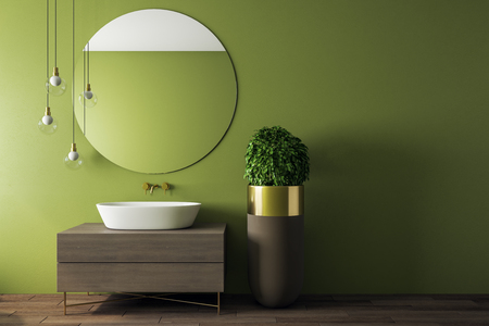 Contemporary green bathroom interior with appliances and decorative pot tree. Design and real estate concept. Imagens