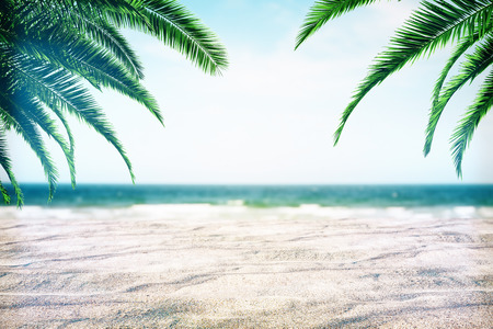 Beautiful beach background with sand and palm trees. Creativity and nature concept Stock Photo