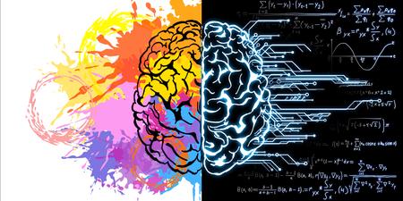 Bosquejo del cerebro creativo con fórmulas matemáticas y salpicaduras de pintura. Concepto de arte y mente. Representación 3D