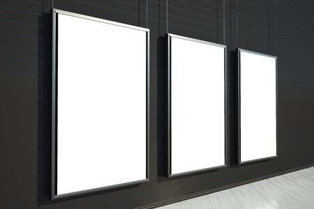 Side view of empty posters on interior wall. Gallery concept. Mock up, 3D Rendering 스톡 콘텐츠