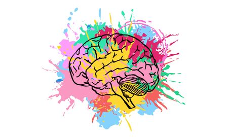 Creative colorful brain splash sketch on white background. Brainstorm and intelligence concept. 3D Rendering