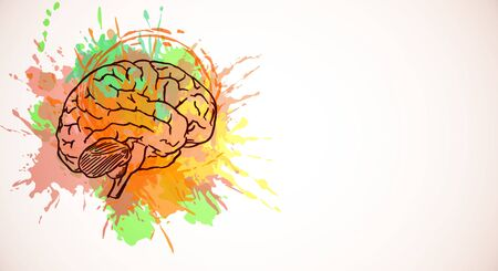 Creative colorful brain splash sketch on white background. Brainstorm and emotion concept. 3D Rendering 写真素材