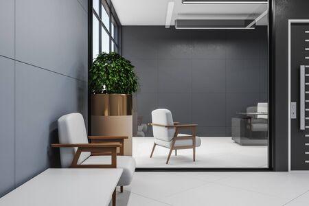Minimalistic waiting room with chairs, wooden floor and plant. Workplace and lifestyle concept. Mock up, 3D Rendering Stok Fotoğraf