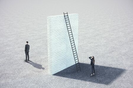 Businesswoman looking on brick wall with ladder. Teamwork and challenge concept. Mock Up
