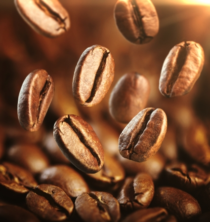 large bean: fresh coffee beans with focus on one are falling
