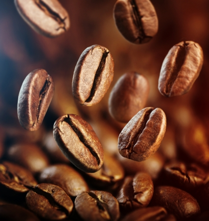large bean: falling coffee beans close up