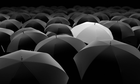 white umbrella among black umbrellas photo