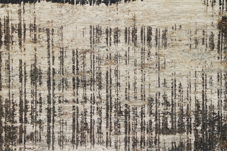 abstract grunge wood texture background photo