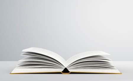open concept: open book on white background