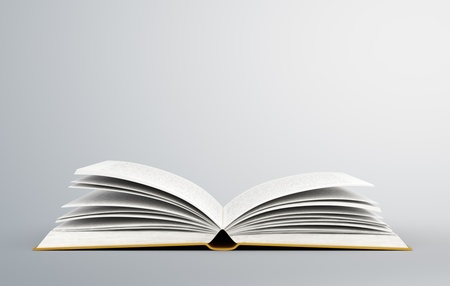 blank book: open book on white background
