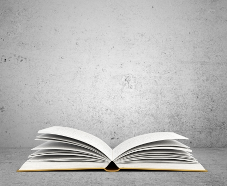 book isolated: open book on concrete background