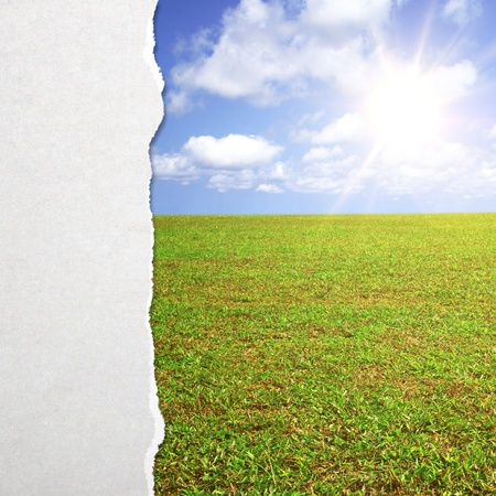 white torn paper and nature background photo