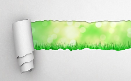 torn paper and abstract grass background photo