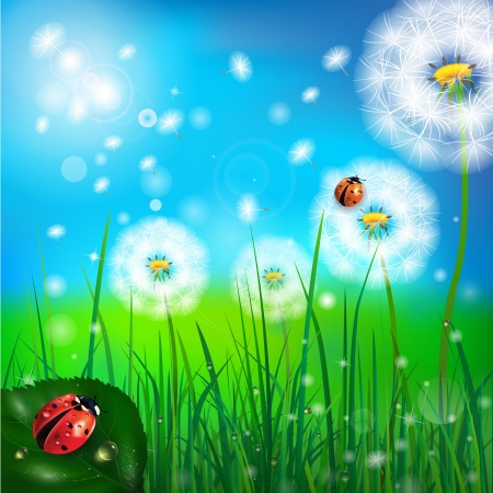 vector background with grass and ladybug 矢量图像