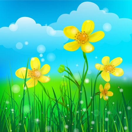 yellow flowers on green grass background