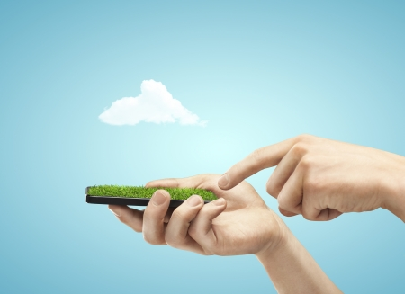 hand holding phone with grass