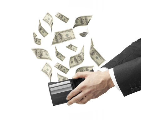 emerge: businessman hand holding a purse from which emerge dollars
