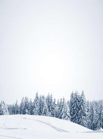 h�tte schnee: sch�nen Winterwald, in der N�he