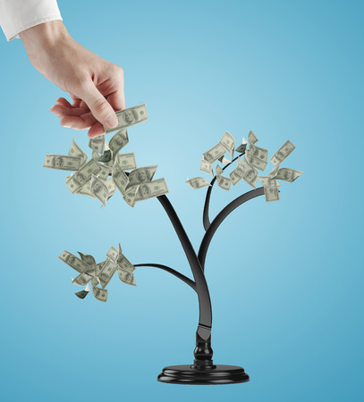 growing money: hand creates dollars tree. Isolated over blue