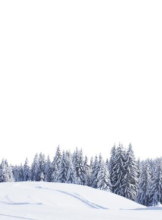 h�tte schnee: sch�nen Winterwald und Himmel