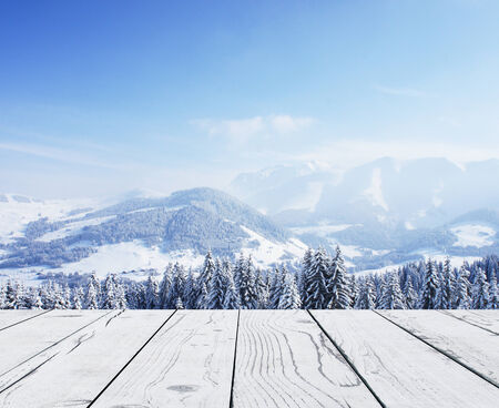 schneeberg: beautiful winter forest and pier Stock Photo